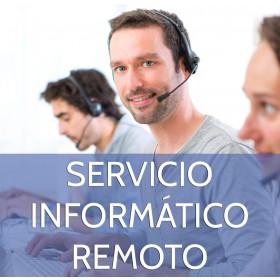 Servicio Informático Remoto (2 horas)