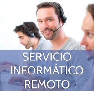 Servicio Informático Remoto (1 hora)